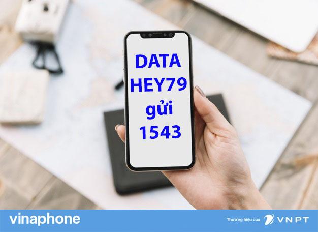 goi-HEY79-vinaphone