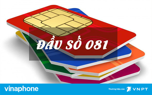 dau-so-081-thuoc-mang-nao